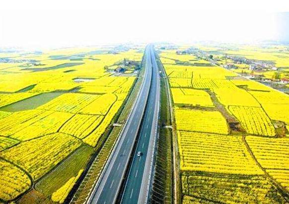 荆门亚搏体育ios下载苹果版制作的新成果:沙洋县公安交通管理信息网建设上线