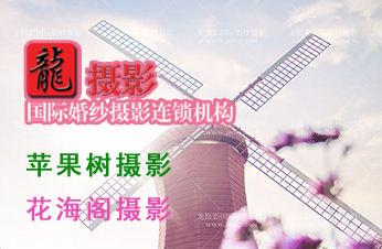 龙摄影,荆门城区摄影